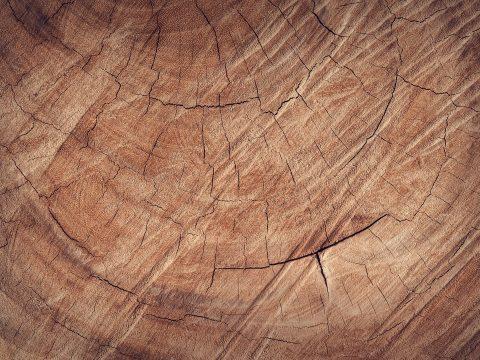 Holz ohne Chemie von FREISPIEL