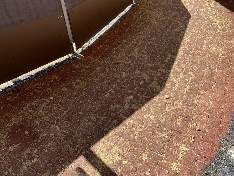 Bodenbelag von FREISPIEL im Pferdestall