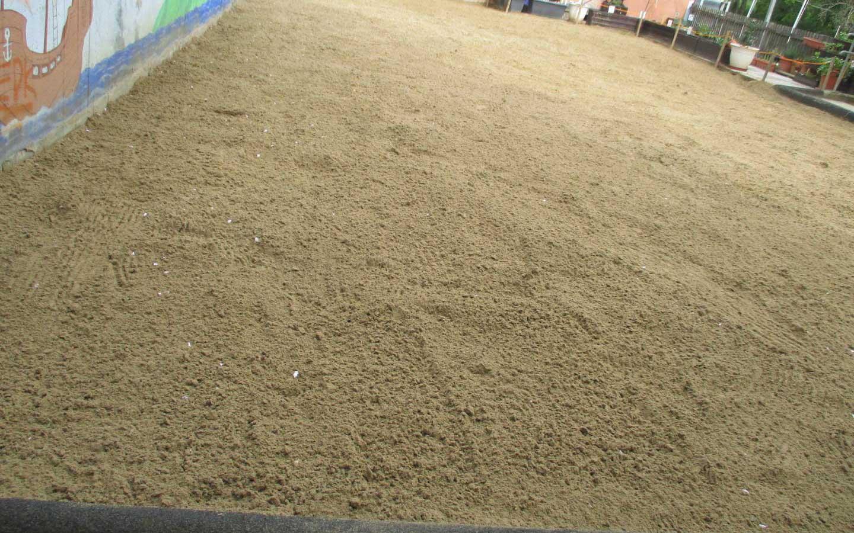 Sandreinigung