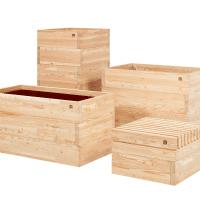 Kista Boxen